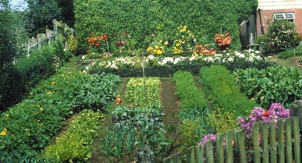 Своими руками фото для дачи огорода